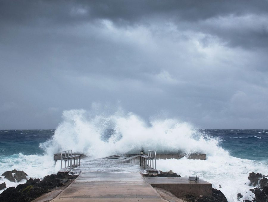 Hurricane+Laura